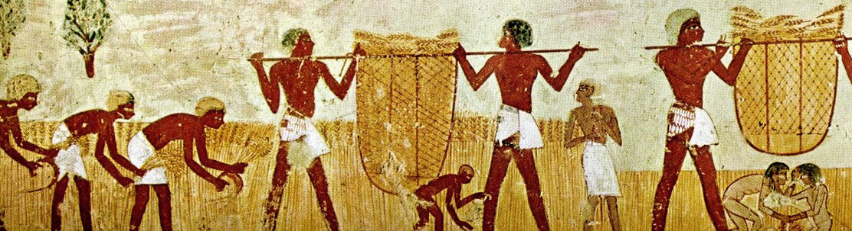 HOF Episode 6: Lands of the Nile(Egypt)
